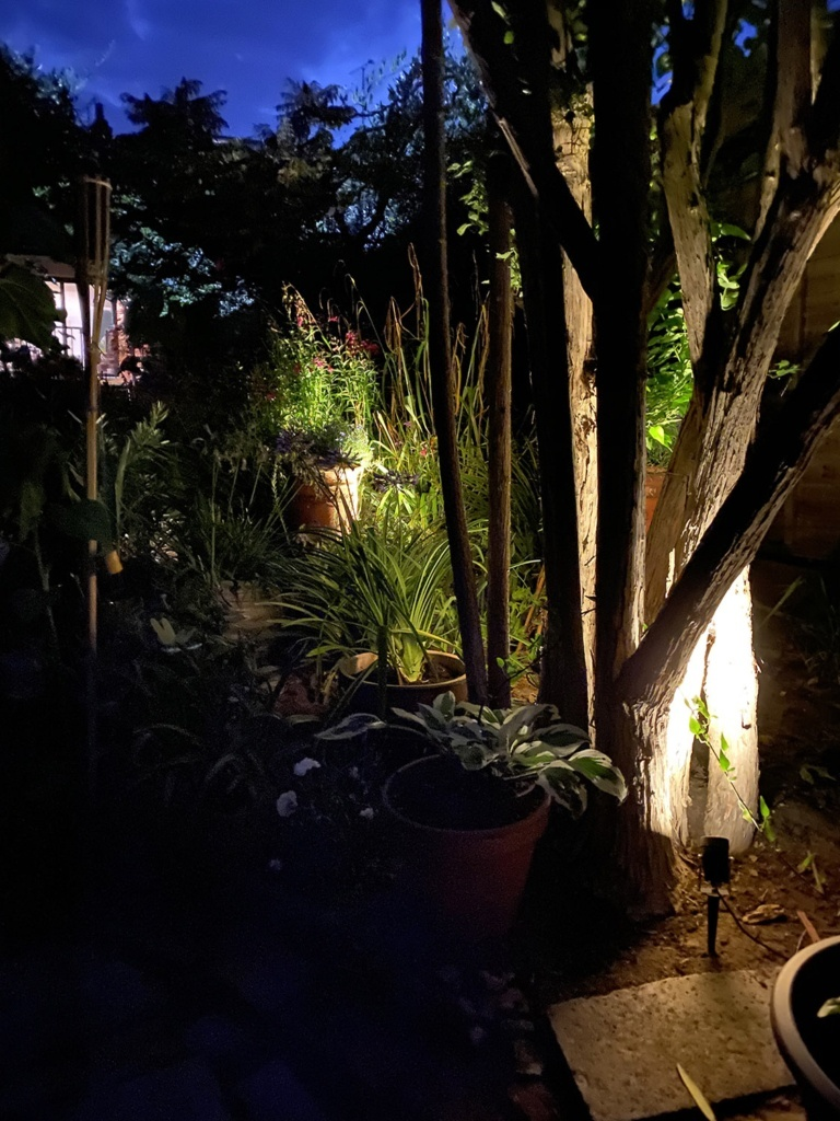 Garden lighting outside my home