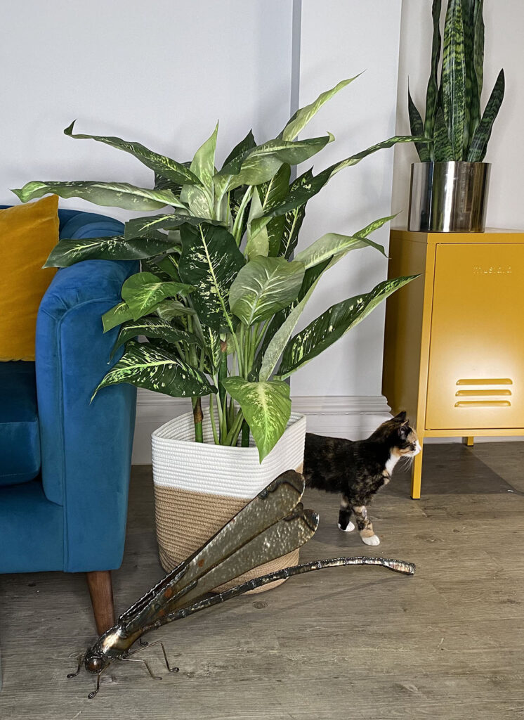 Spotted evergreen faux plants with Pickle the kitten