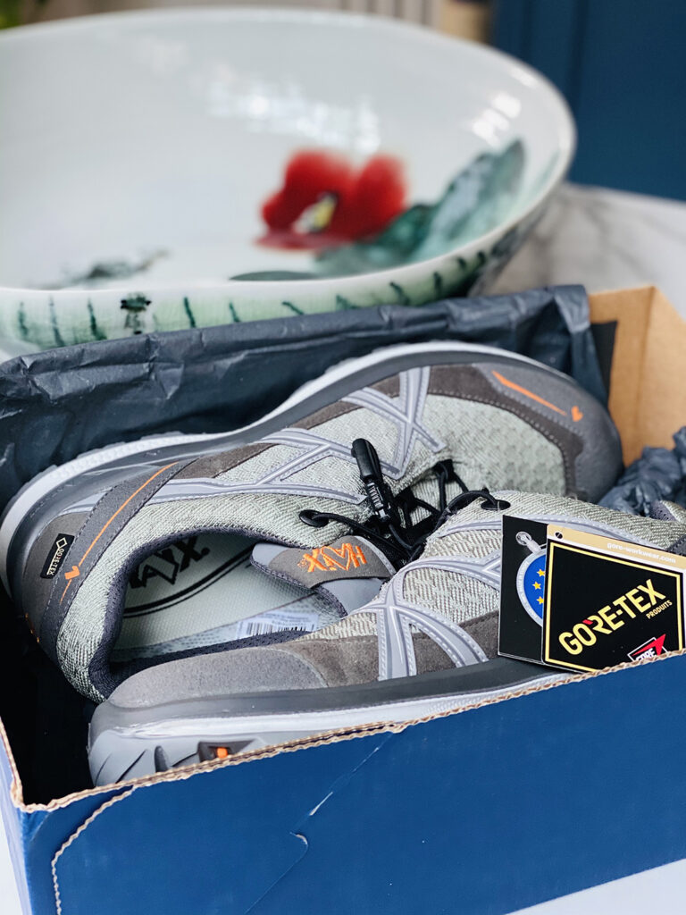 Haix shoes in box